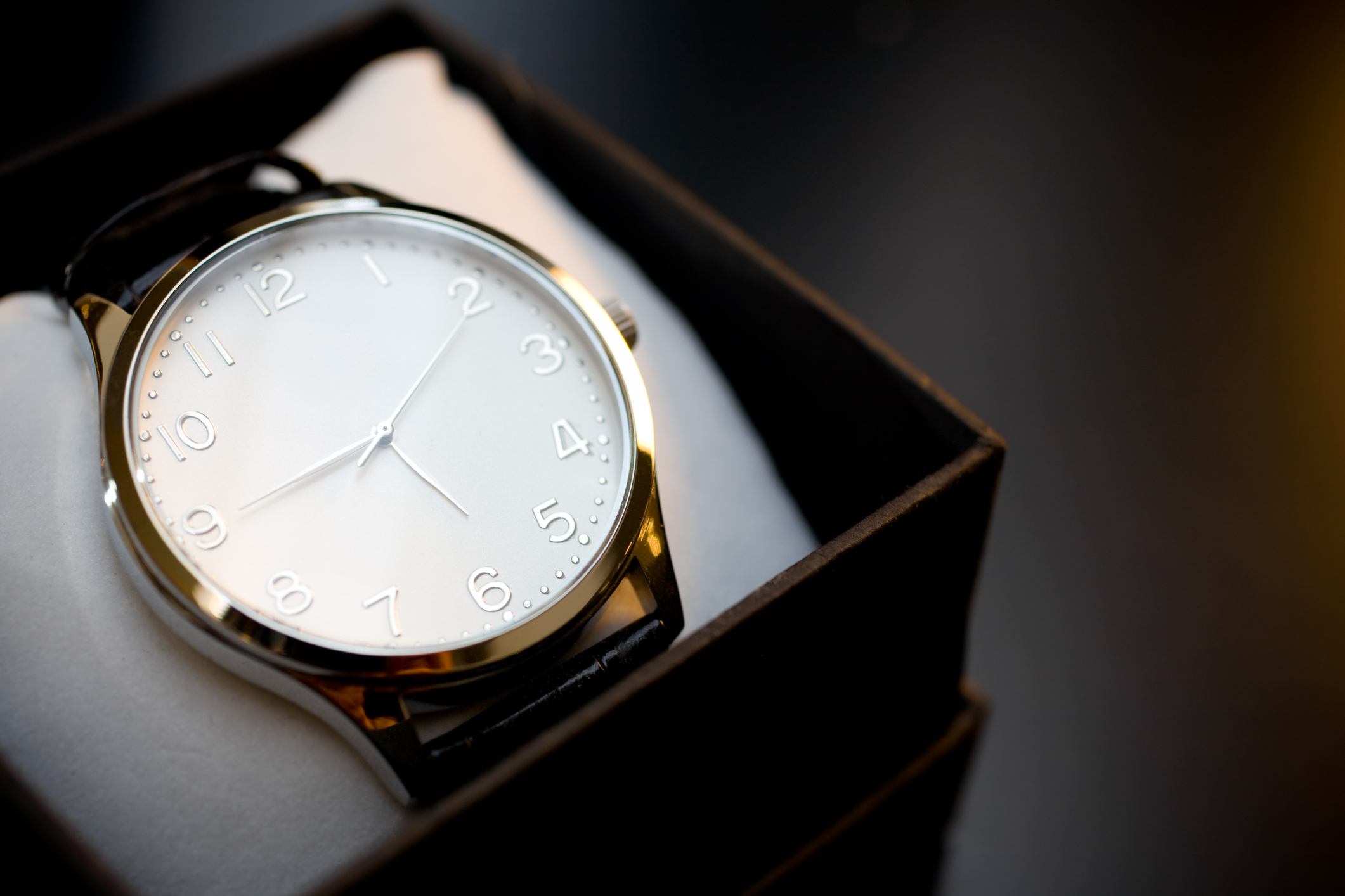 high end watch protected protected with tamper evidence